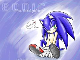 Silly Sonic Wallpaper by BlizzardWolf