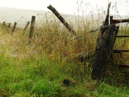 Countryside Fencing by tartanink