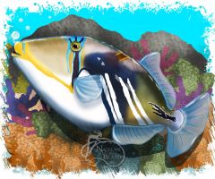 Picasso Triggerfish by NadilynBeato