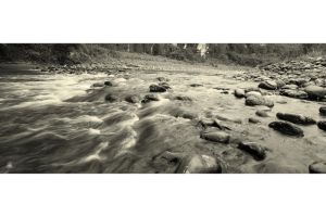 Gold River by FlowGraphic