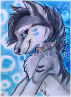 ACEO_NightFell by Kyuubreon