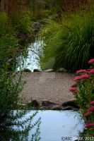 Water Path by RicGrayDesign