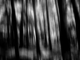 stretched wood by awjay