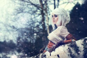 Zireael (WITCHER cosplay) by LienSkullova
