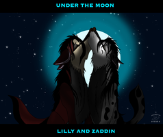 UNDER THE MOON by alphakw