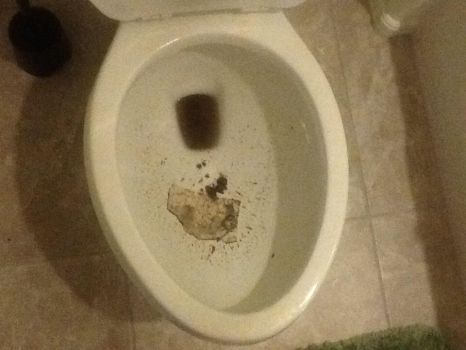 The new toilet is broken by Mickeymouseisgay