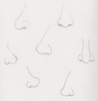 Nose practice 1 by ShoopOnTheMoon