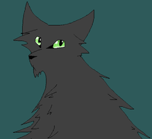 Hollyleaf by thedoomedkitteh