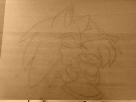 CANVAS  SONAMY by AngelCARMINE