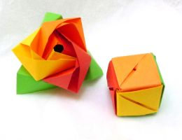 Magic rose cubes: open + closed by wombat1138