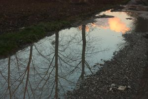 Right puddle by enkyl