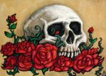 Good Year for the Roses by rawjawbone