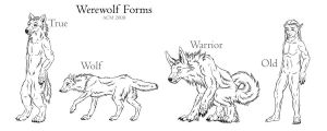 Werewolf Forms - Reference by Eclipse-de-la-Luna