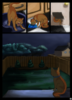 Warriors: into the wild - Page 3 by SassyHeart
