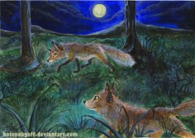 Foxes at night by kotenokgaff