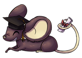 Graduation Mouse by Vullo