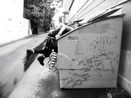 Dumpster Diving by biancabeee