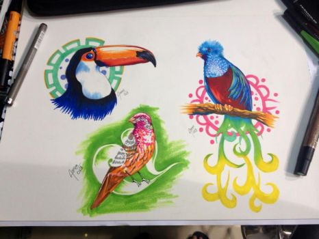 birds by ZOOMZOOMMM