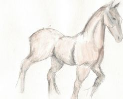 Antoine the Horse - watercolour 3rd attempt. by GhirahimsRemlit