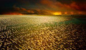 Mud Flats at Low Tide #2 by cokehead666