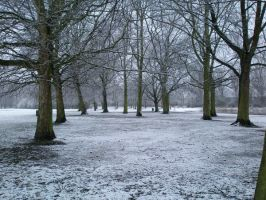 snow scape 4 by theboss2