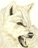 Realistic Snarling Wolf by FallenAngelWolf13
