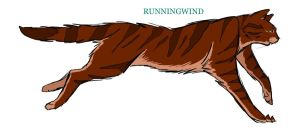 Runningwind by Lithestep