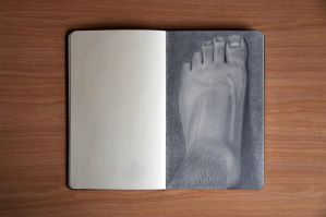Foot Still Life Drawing by Rollingboxes