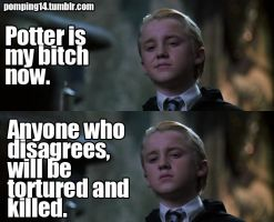 Potter is Malfoy's Bitch by AnnikaClarisse