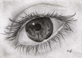 Eye Study by Cloudless-Rain