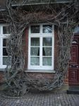 framed window by Dragoroth-stock