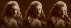 Fili the Shy - frames by Aegileif