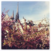 Balade a Paris by Merlyn-Wood