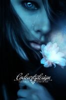 MY TEARS by codeartworks