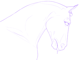 Dressage Event WIP by PinkLionArt