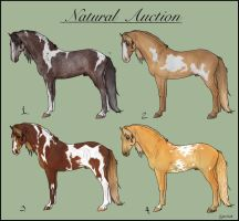Closed - 6th Natural Auction by ESWard