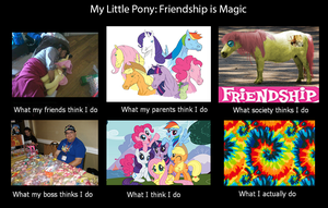 Mlp what everyone thinks by PhoenixPony