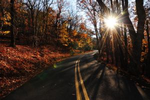 Sunlight Drive by greentome