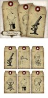 Printable Steampunk Scientist Tags by VectoriaDesigns