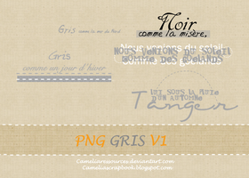gris v1 by cameliaRessources