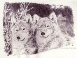 A Parable of Two Wolves by moyan