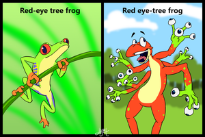 Know your frogs by Hexaditidom