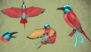 .: Bee-eater design :. by Shien-Ra