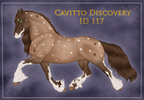 Cavitto Group Import 117 by ThatDenver
