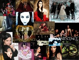 Evanescence collage by hungrylikethwolf203