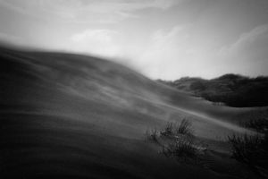 Dust to dust by lomatic