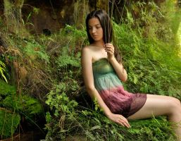 Rosie - moss and ferns 1 by wildplaces
