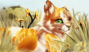 Brightheart by Rae-elic
