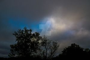 Project 365 - 122 - A Little Blue by jguy1964