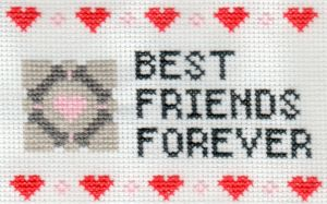 Portal BFF Sampler by StitchPlease